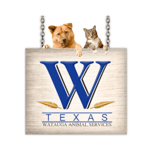 WATAUGA ANIMAL SERVICES (59)