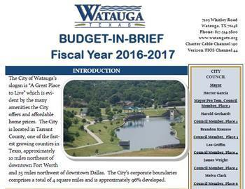 THE BUDGET IN BRIEF