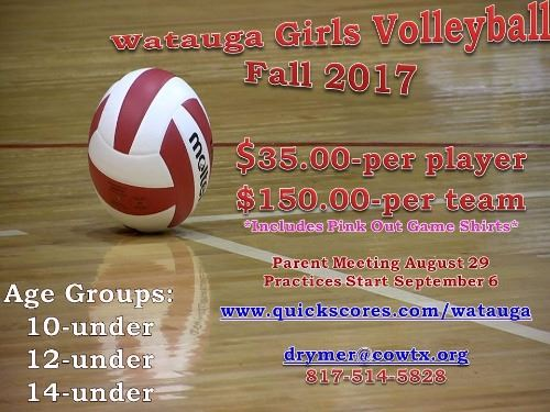 volleyball updated 2017