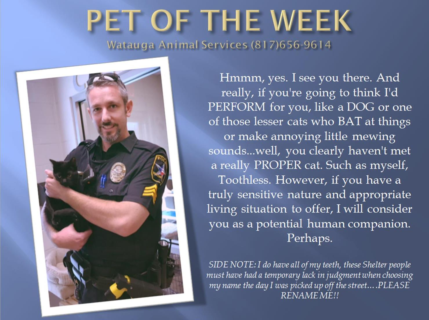 Pet of the Week 92217