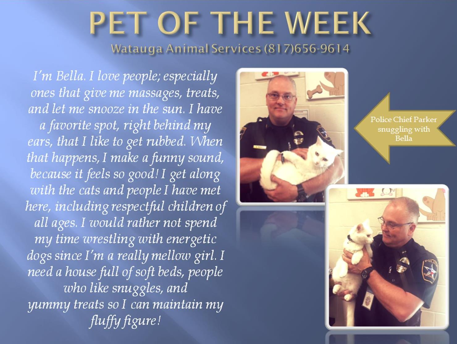 Pet of the Week Bella