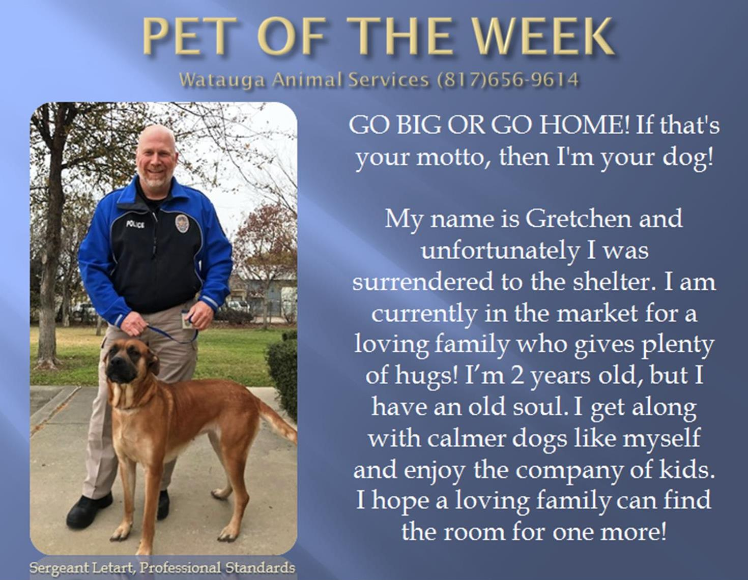 Pet of the Week - Letart
