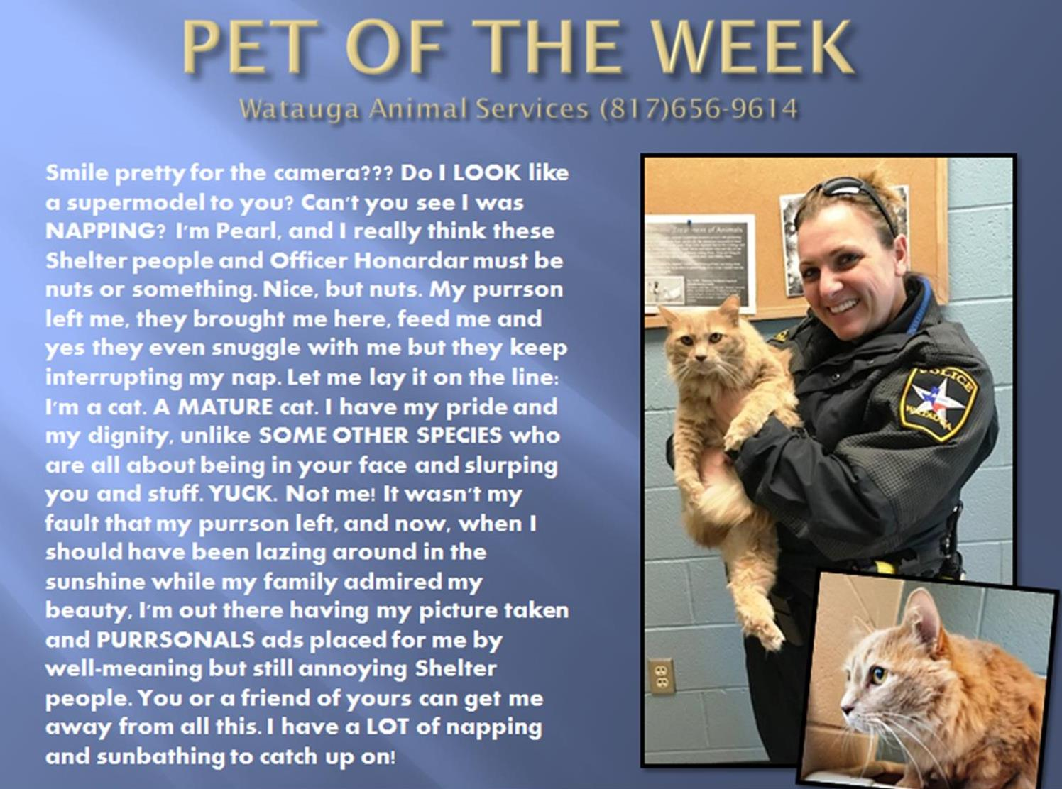 Pet of the Week - Kacee and Pearl