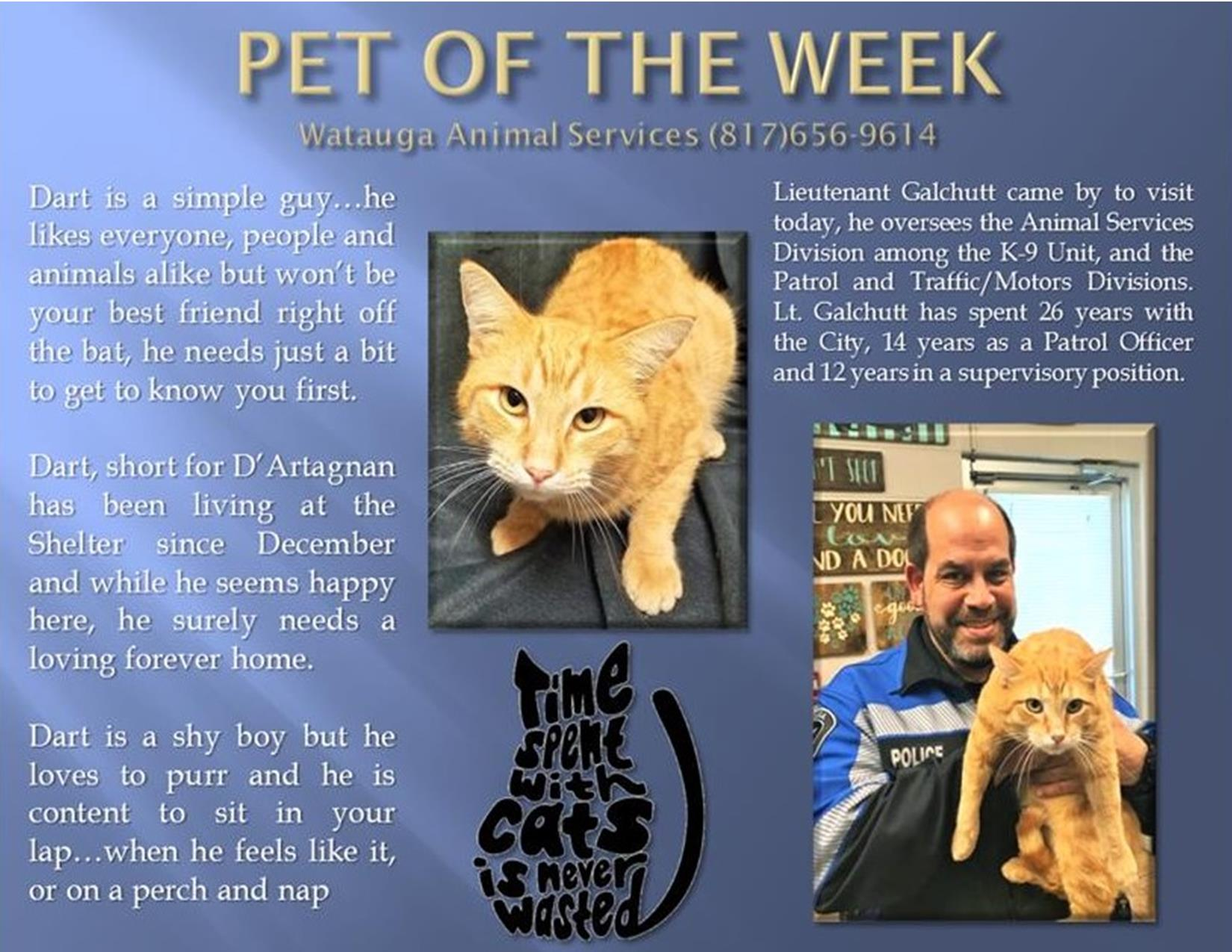 Pet of the Week - Galchutt and Dart