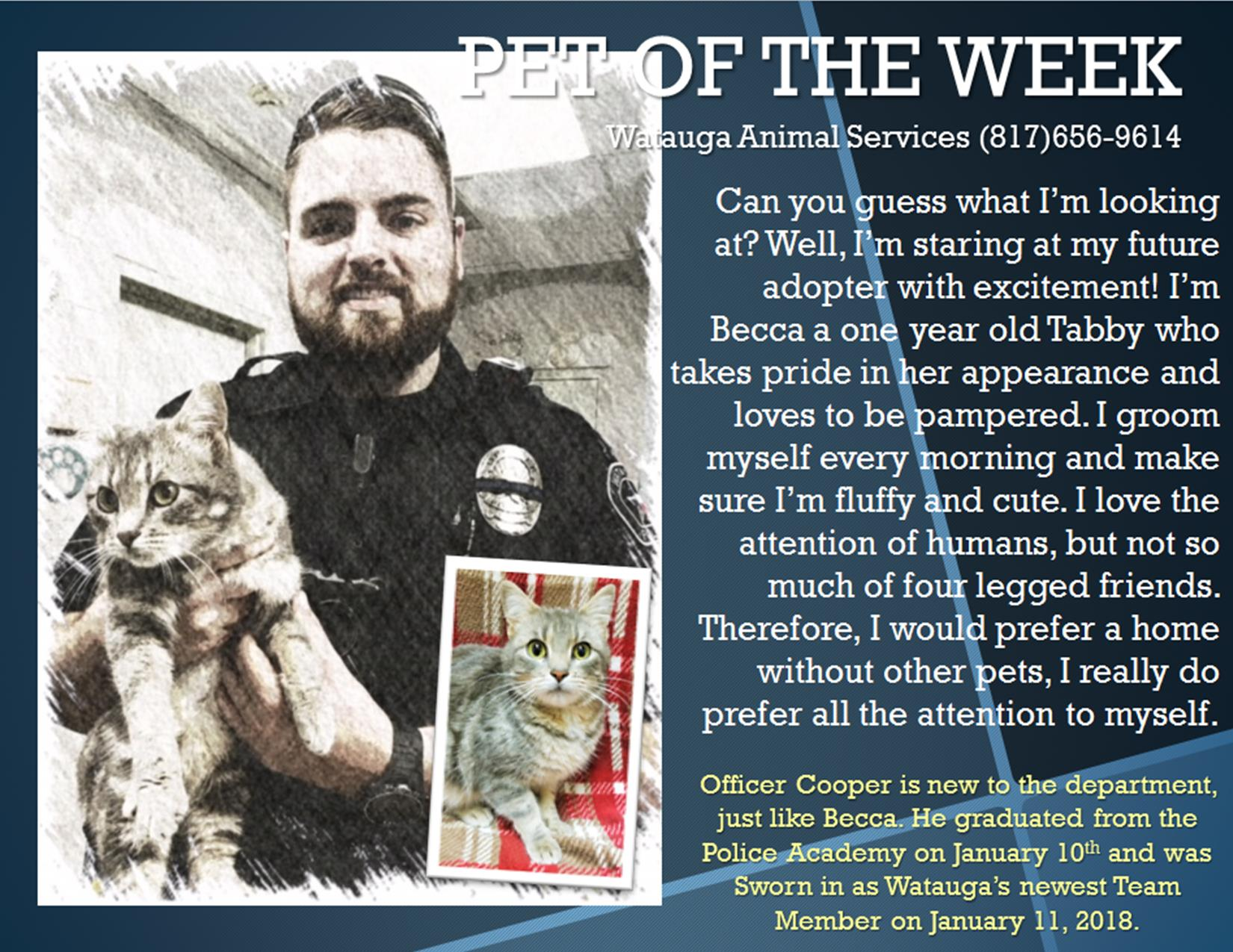 Pet of the Week - Cooper and Becca