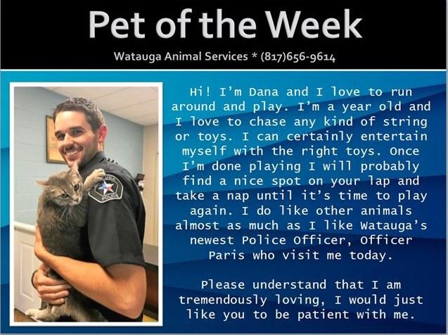 Pet of the Week - Paris and Dana
