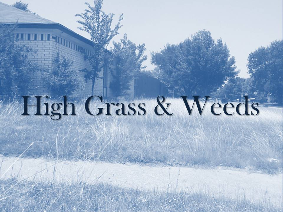 High Grass and Weeds