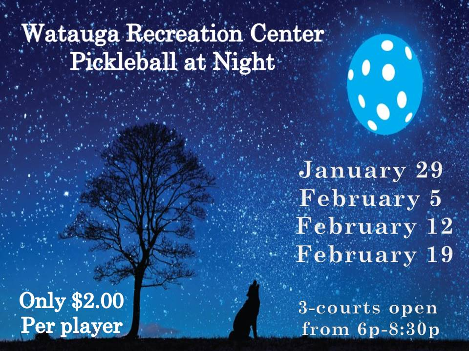 Pickleball at night 2019
