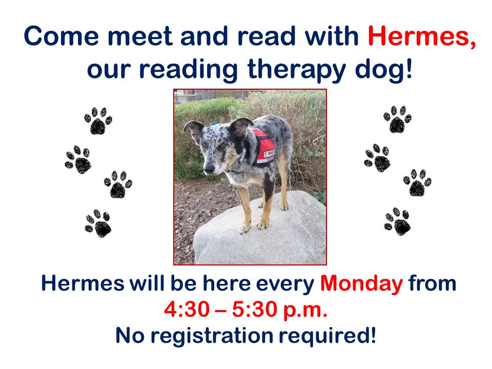 Hermes Reading Therapy Dog 2019